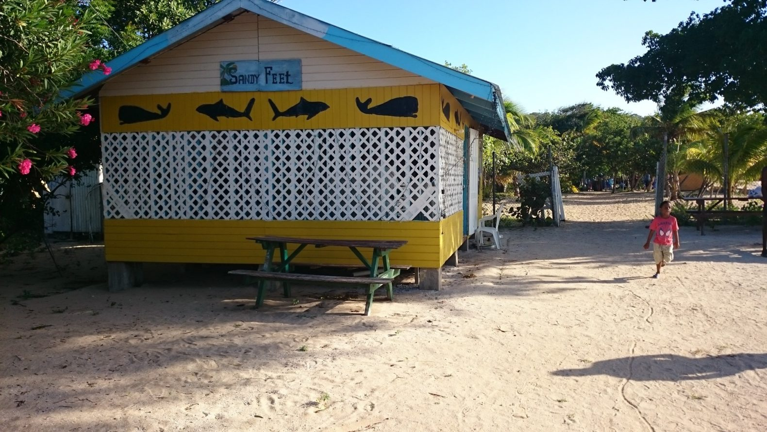 Sandy Feet Bar in Saline Bay, Mayreau